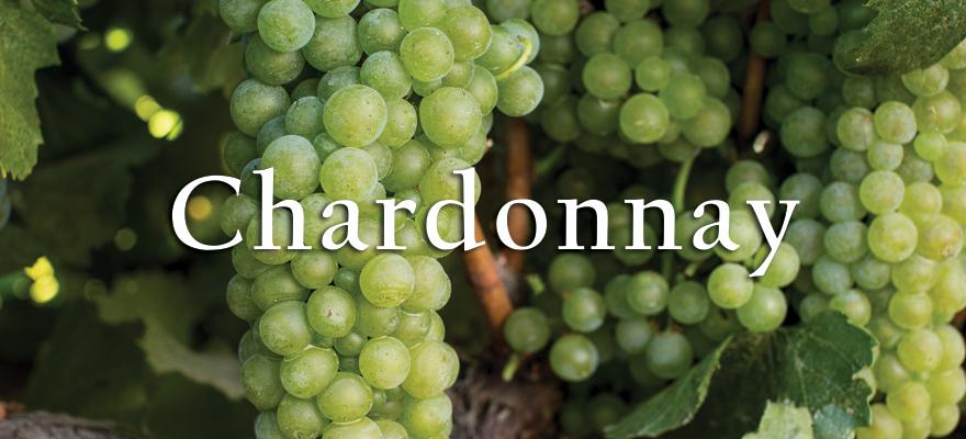 Us G Chardonnay