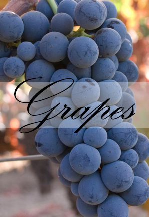 FPS Grape Program