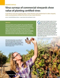 Virus surveys of commercial vineyards show value of planting certified vines