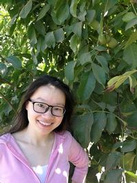 Limin Chen profile picture